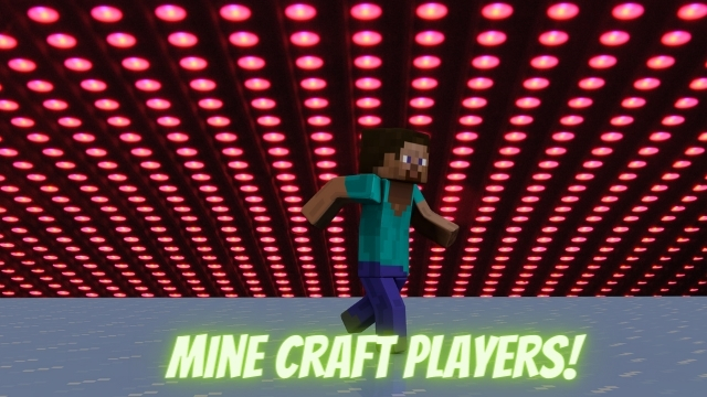 sucessful mine craft player in the world
